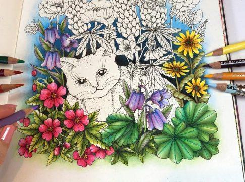 magic_garden